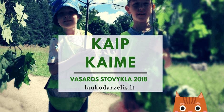 Vasaros lauko stovykla 2018 (Vilniuje ir Kaune)