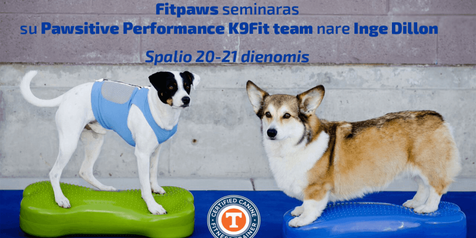FitPaws fitness seminaras/ workshop'as