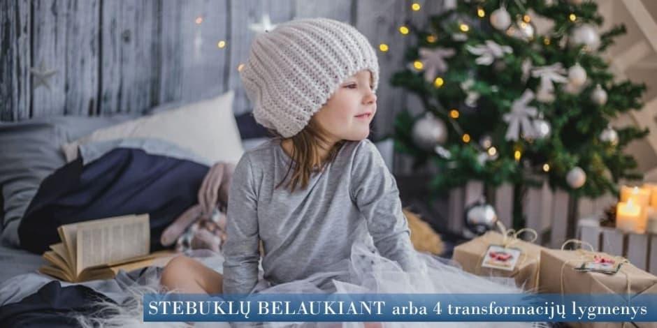 Atviras Teta meditacijų vakaras Vilniuje